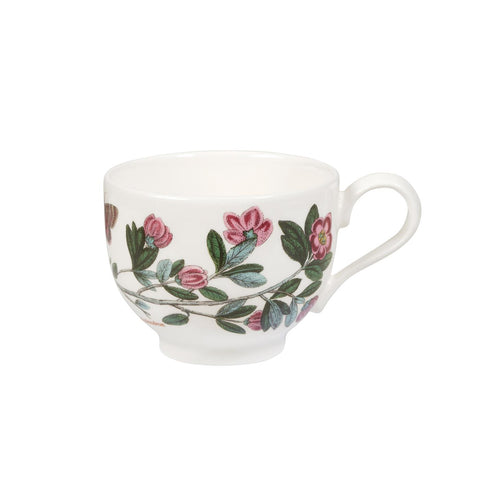 Botanic Garden Tea Cup ONLY ( T ) Traditional Shape