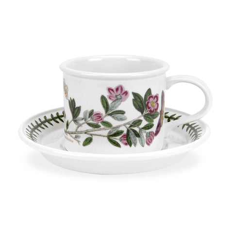 Tea Cup & Saucer 0.20 L/7 Fl oz