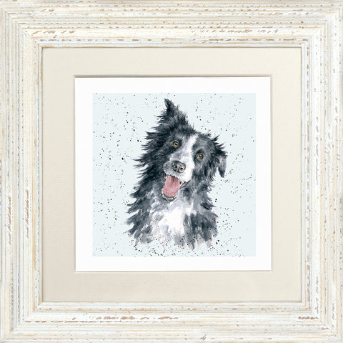 Wrendale Framed Greeting Cards - A Dog's Life Collection Two