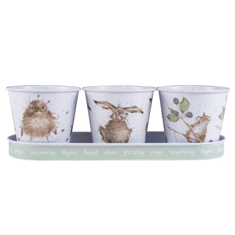 Wrendale Herb Pots & Green Tray -  Bird, Hare & Mouse