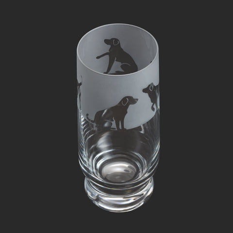 Dartington Crystal Aspect Highball Labrador