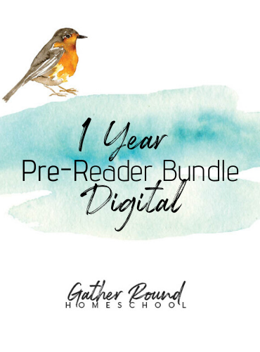 Year 1 Pre-Reader DIGITAL