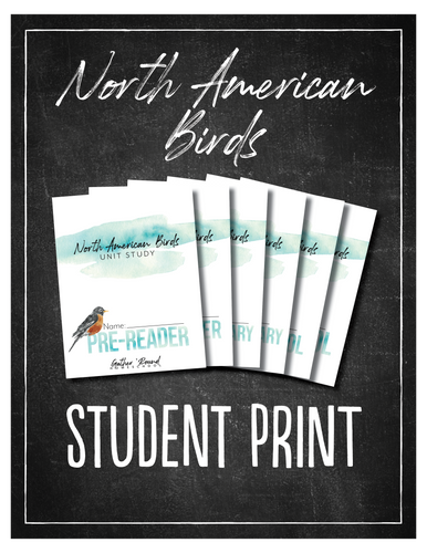 North American Birds Student Notebook (Hard Copy)