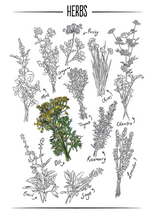 Load image into Gallery viewer, Botany Nature Journal (Digital)