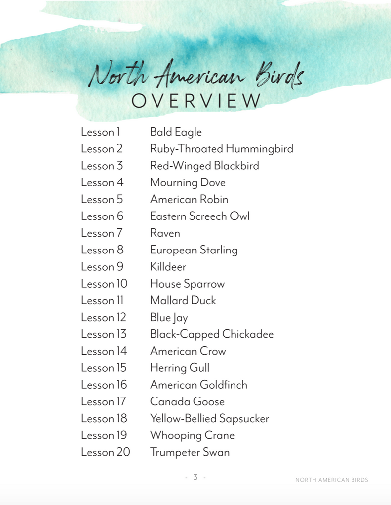 Printed Teachers Guide with Digital Notebooks Combo (North American Birds)