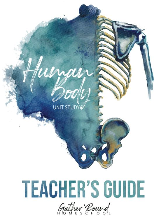 Human Body Unit 1 Student Bundle (DIGITAL)