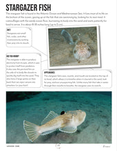 Load image into Gallery viewer, Oceans Teacher's Guide (HARD COPY)