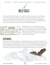 Load image into Gallery viewer, North American Birds Teacher's Guide (HARD COPY)