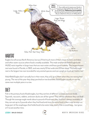 North American Birds Teacher's Guide (HARD COPY)