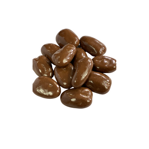 Chocolate Pecans (8 oz)