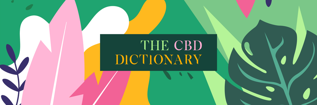 The Definitive CBD Dictionary
