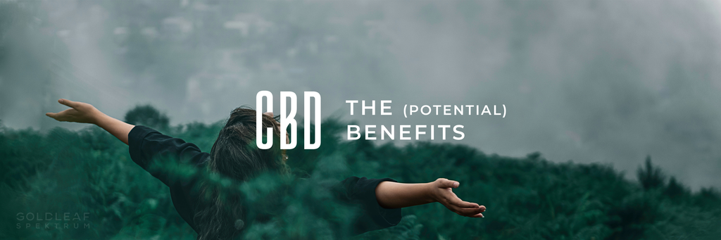 CBD: What Are The Health Benefits?
