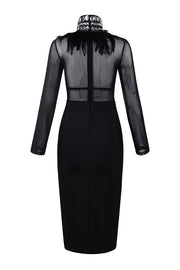 Black Mock Neck Long Sleeve Feather Detailed Midi Dress