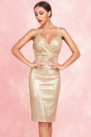 Beverley Sling Sequined Dress