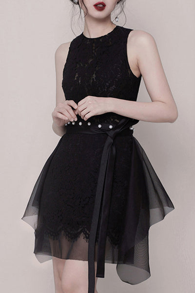 Sleeveless Lace Mini Dress - 2 Colors