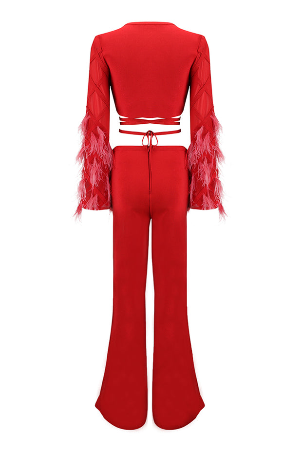 Feather Detail Plunge Mesh Crop Top and Pant Suit