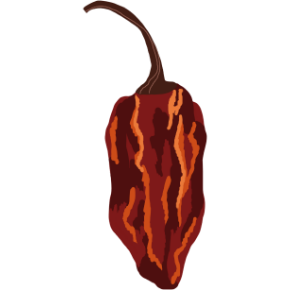 illustration of a chili pepper