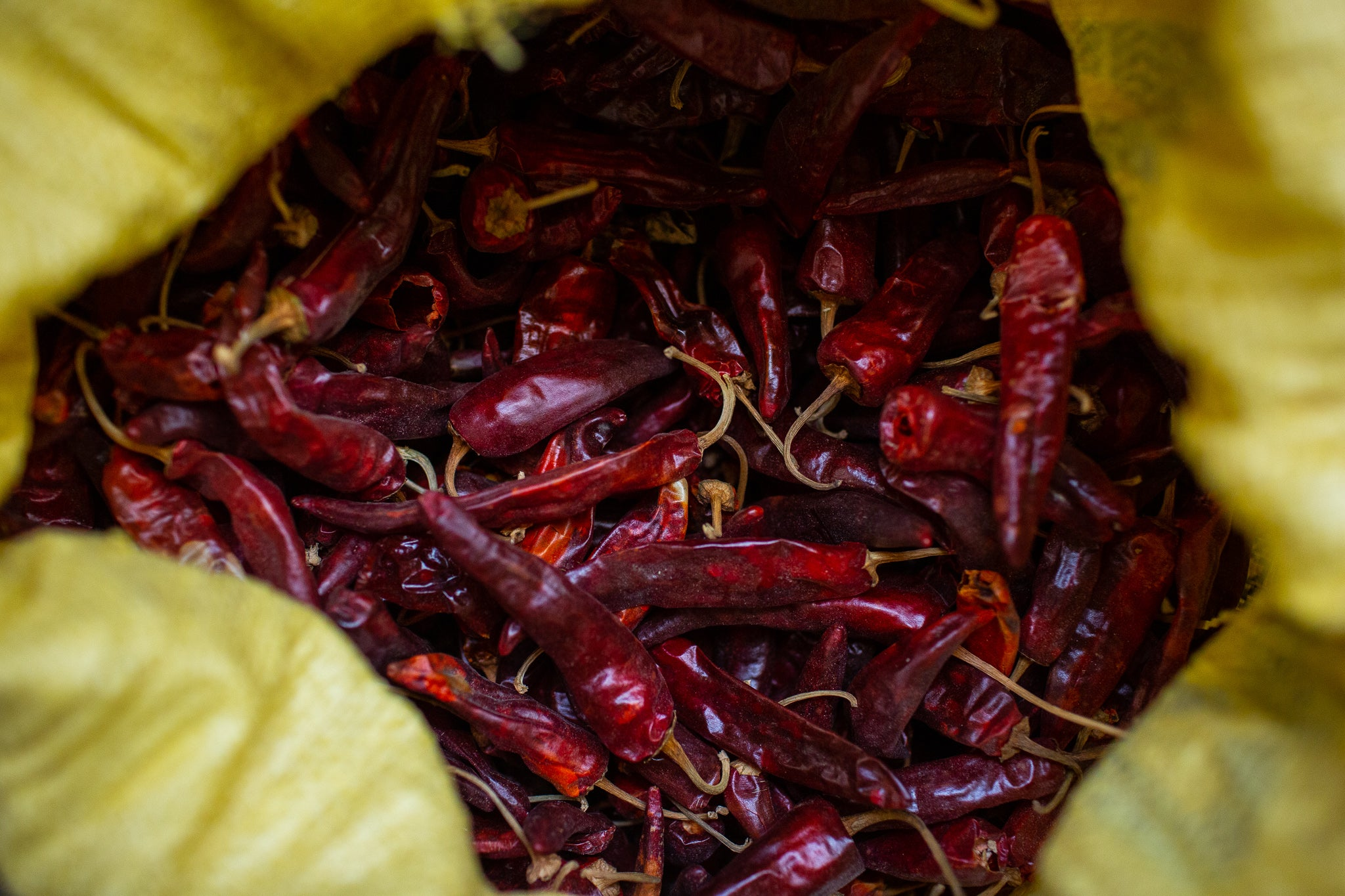 Whole Kashmiri chillies in a yellow bag