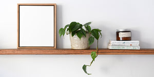 canvas and wood float frame