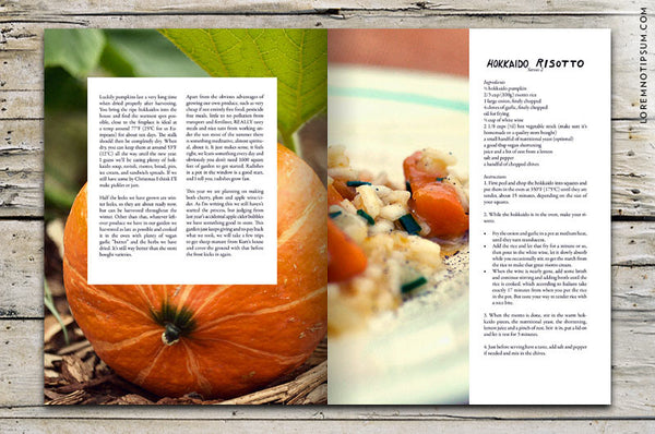 Chickpea Magazine – Issue 9 (Fall 2013)