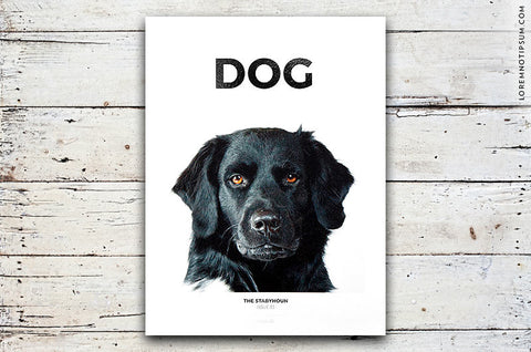 Dog Magazine Issue 1 – Bestellen bei LOREM (not Ipsum) in Zürich (Schweiz)
