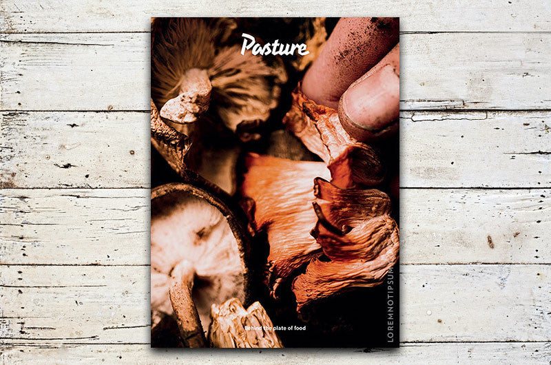Pasture Magazine Issue 0 – Bestellen bei LOREM (not Ipsum) in Zürich (Schweiz)