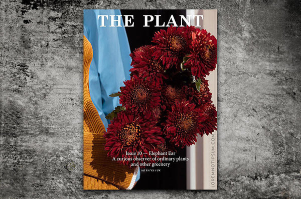 The Plant Journal Issue 10 (Elephant Ear) – Bestellen bei LOREM (not Ipsum) in Zürich (Schweiz)