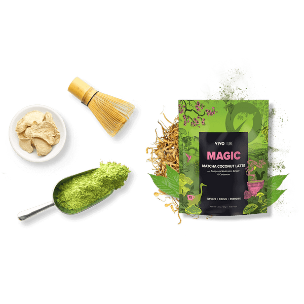 Vivo Life Magic MATCHA COCONUT LATTE ingredients