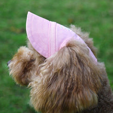Load image into Gallery viewer, Matching Pet Hat - Fashionsarah.com