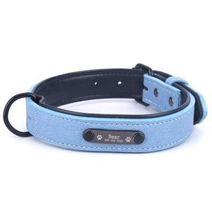 Personalized Pets Collar & Walking Leashes