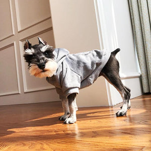 Pet Fashion Clothing