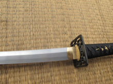 Load image into Gallery viewer, Ronin Katana Dojo Pro Katana Model #29