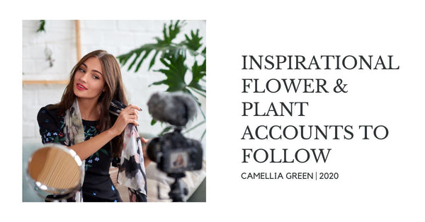 Inspirational Flower & Plant Accounts To Follow