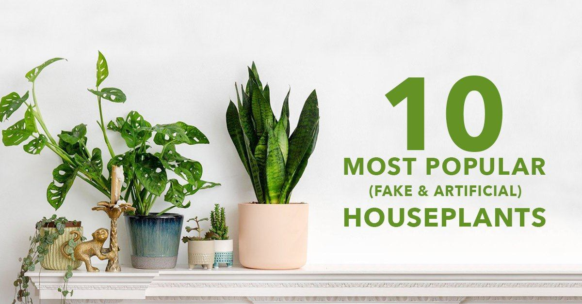 The 10 Most Popular Fake And Artificial Houseplants