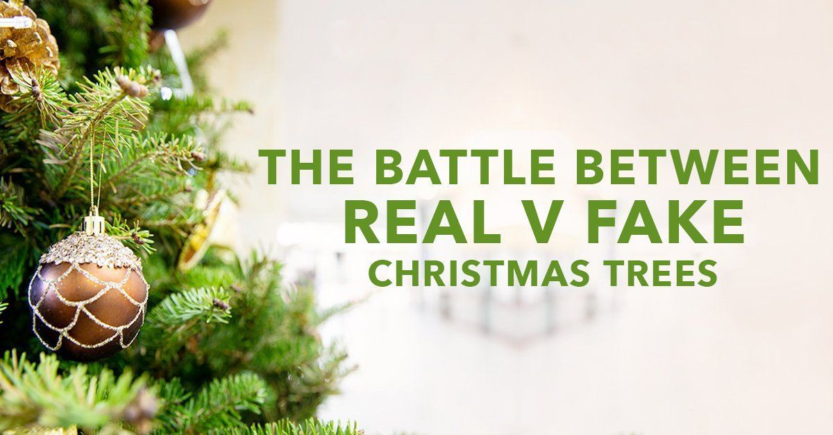 The Battle Between Real v Fake Christmas Trees
