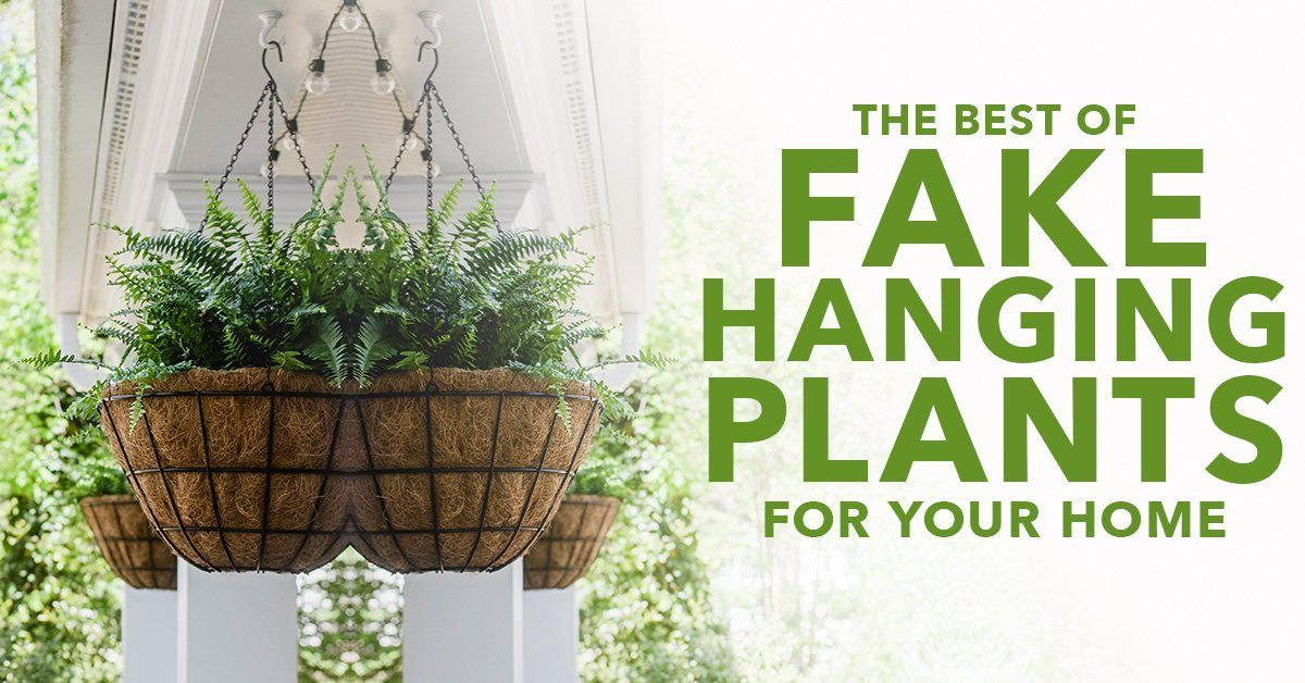 The Best Fake Hanging Plants For Your Home