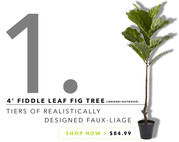 Groovy {Silk} Greens For Father's Day: Fiddle Leaf Fig Tree