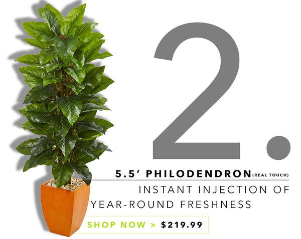 Groovy {Silk} Greens For Father's Day: Philodendron Plant