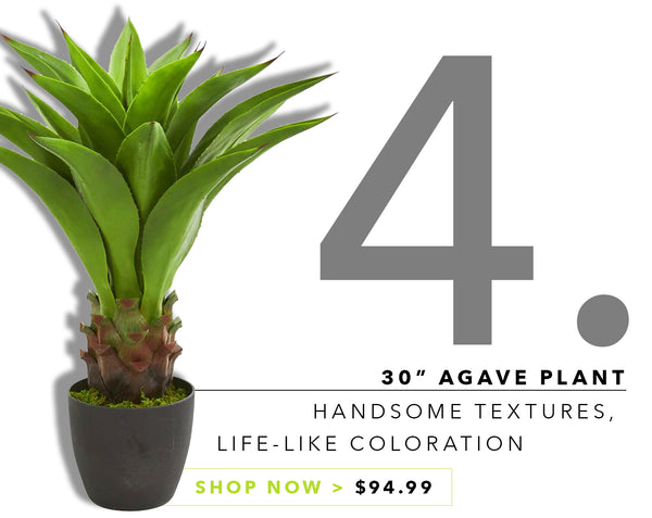 Groovy {Silk} Greens For Father's Day: Agave Plant