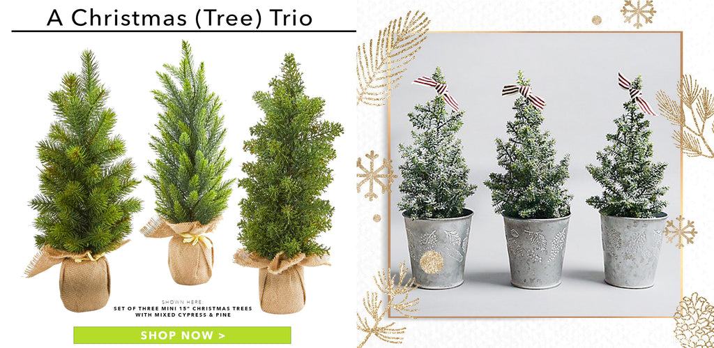 A Christmas (Tree) Trio