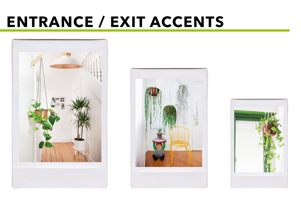 Picturesque Places For Hanging (Silk) Plants: Entrance / Exit Accents