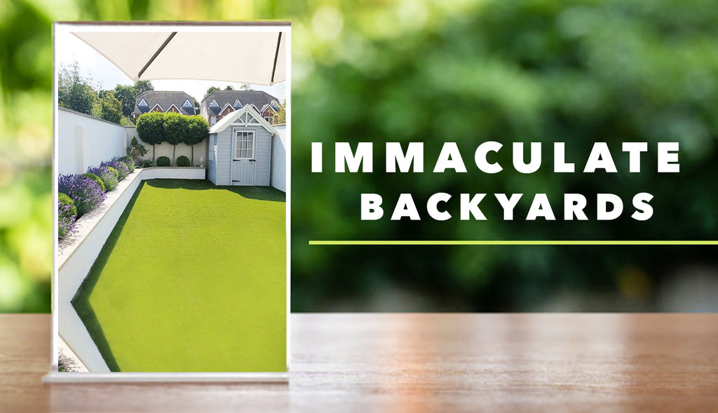 Immaculate Backyards with Artificial Grass