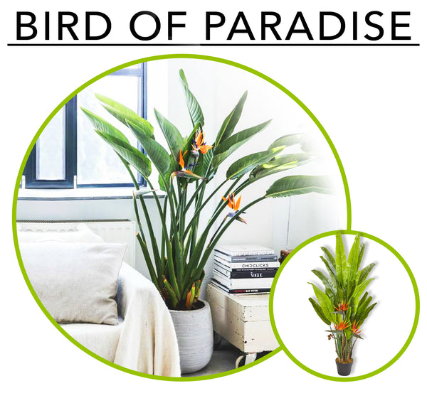 Tropic Like its Hot; Artificial Plants To Create Your Own Urban Jungle Indoors: Bird of Paradise