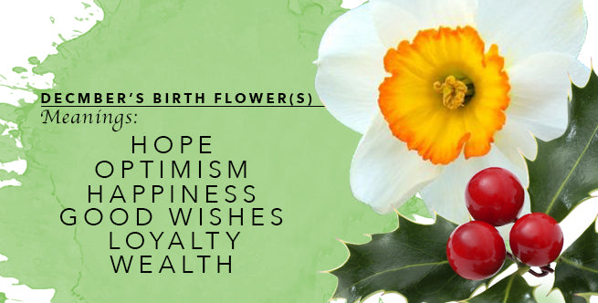 December Birth Flower Meanings