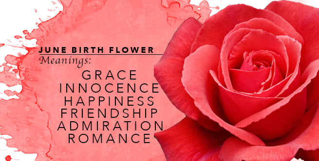 The Meaning of June's Birthflower: Roses