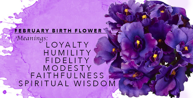 The Meanings of February's Birthflower: Violets