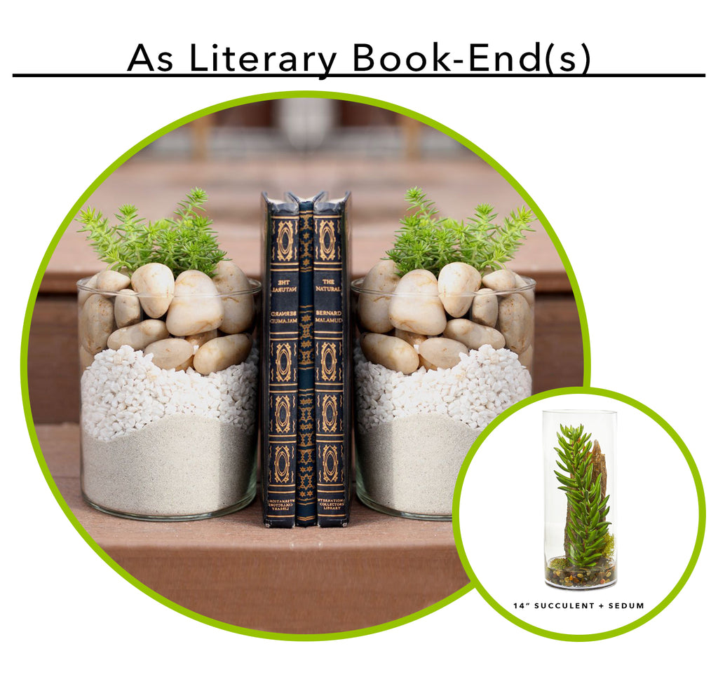 Using Artificial Succulents As Literally Book End(s)
