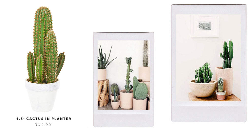 Create Your Own Desert-Scape With Artificial Cacti & Succulents