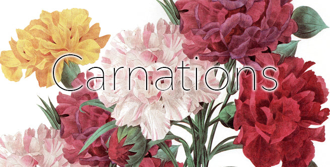 Artificial Winter Florals To Outlive The Holidays: Carnations