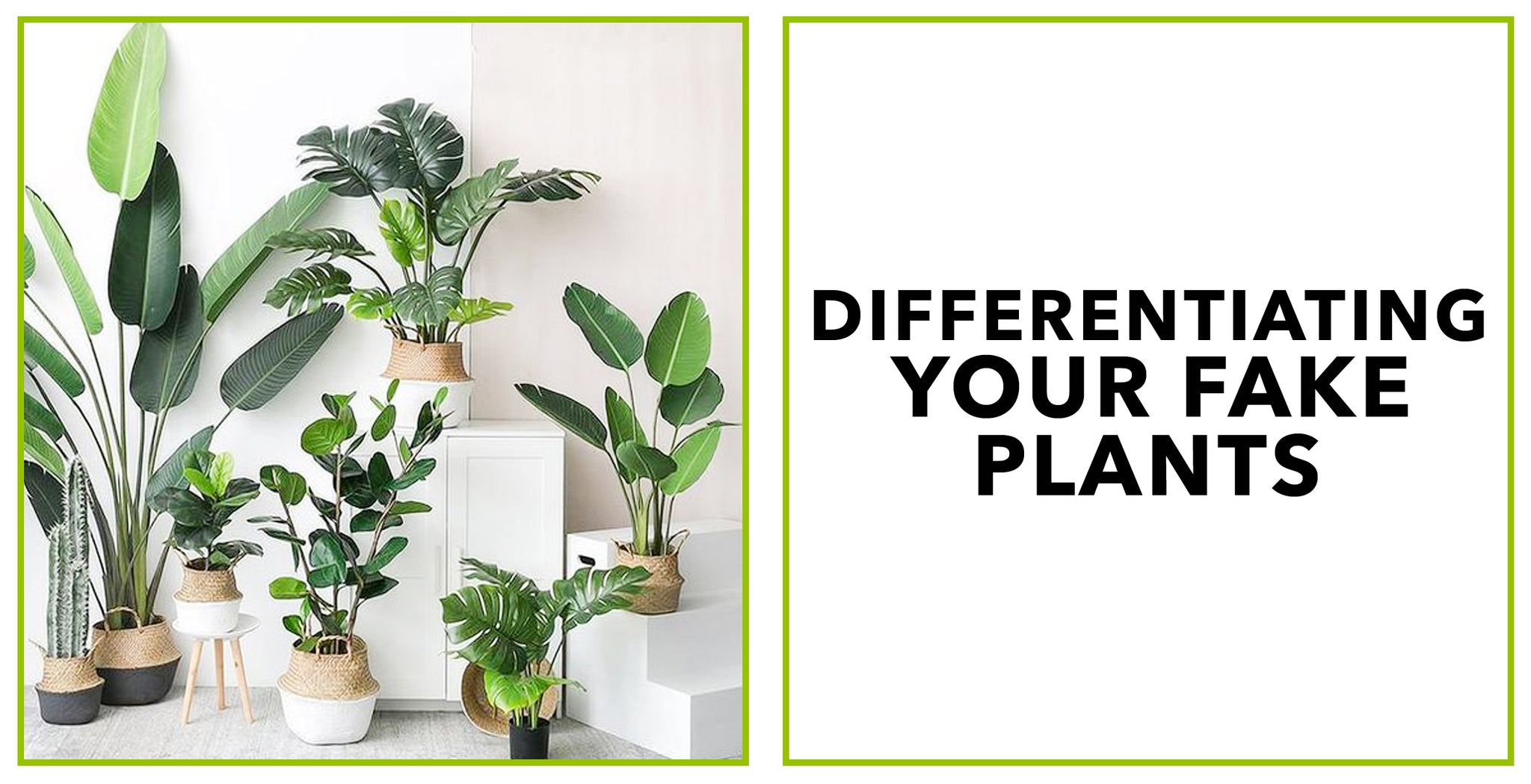 Differentiating Your Fake Plants